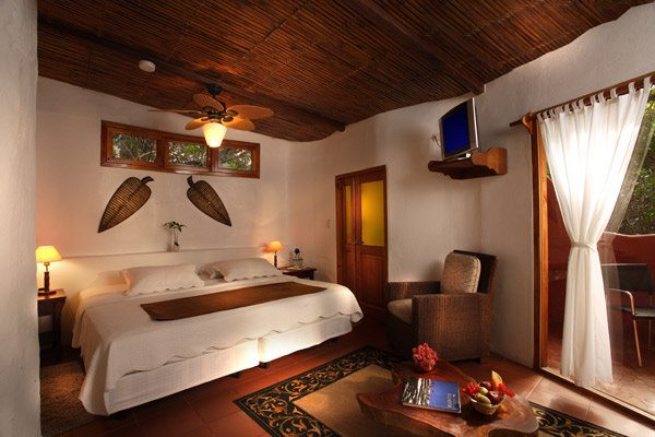 Red Mangrove Aventura Lodge | Standard Room