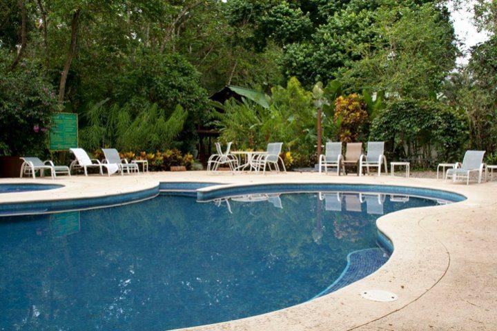 Selva Verde Lodge, Pool