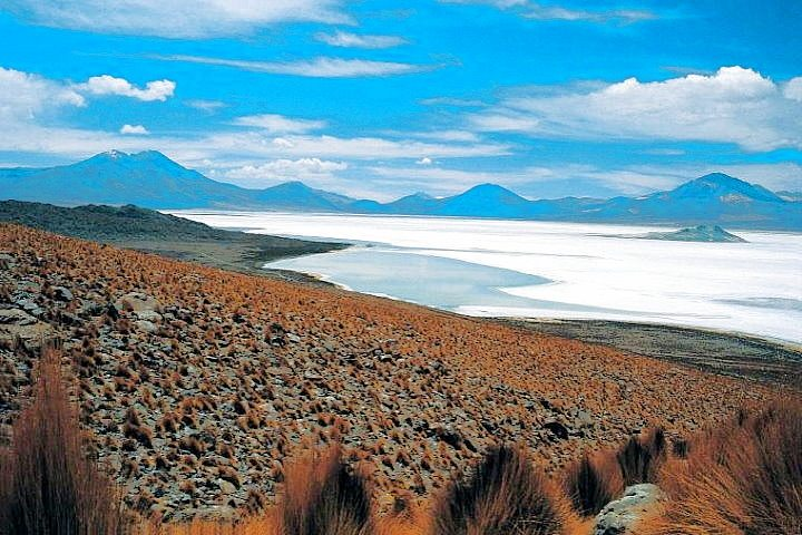 Atacama Salt Lake, Chile