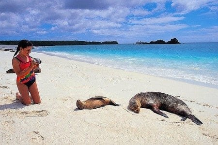 Girl With Sea Lions, Galapagos