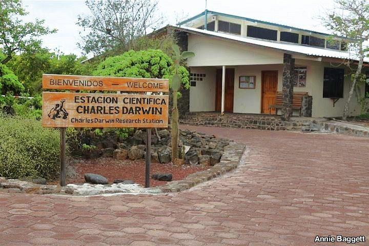 Charles Darwin Research Station, Galapagos