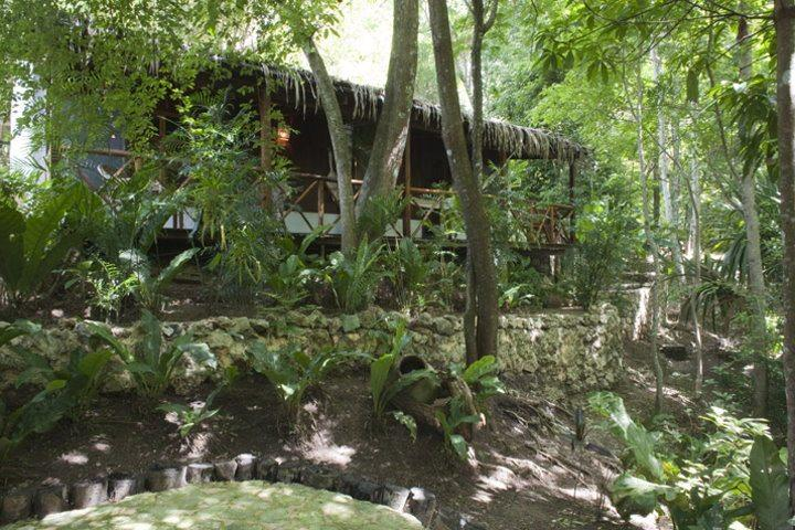 La Lancha | Rainforest Casita