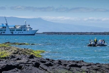 Interests - Expedition Cruising