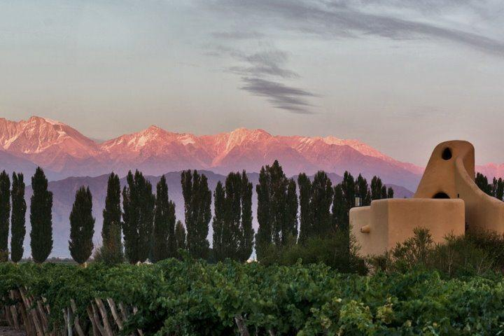 Cavas Wine Lodge | View of the Andes