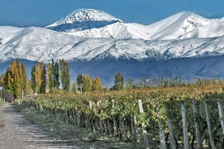 Catena Zapata Vineyard in Lujan de Cuyo, one the the Main Wine Regions in Mendoza, Argentina with the Andes in the background