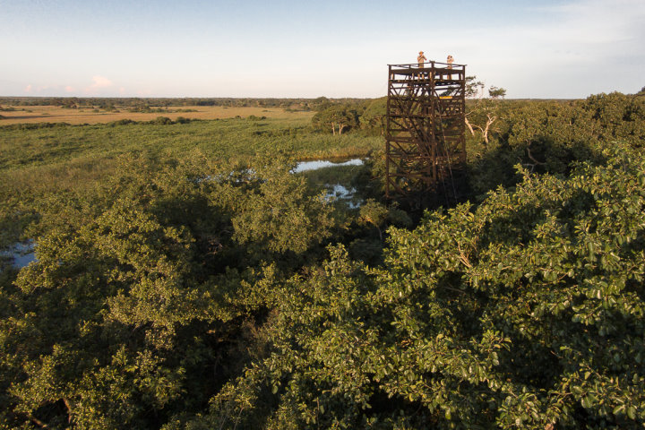 Araras Pantanal Eco Lodge | Observation Tower