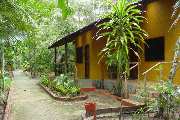 Amazon Ecopark Jungle Lodge, Manaus, Brazil